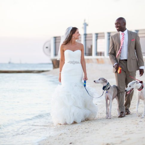 couple with dogs on key west beach