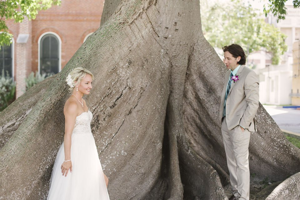 kapok tree in downtown key west in wedding photo
